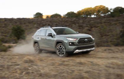 2019 Toyota RAV4 Adventure - Lunar rock 22