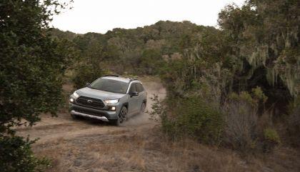 2019 Toyota RAV4 Adventure - Lunar rock 28