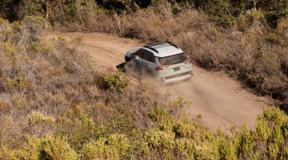 2019 Toyota RAV4 Adventure - Lunar rock 48