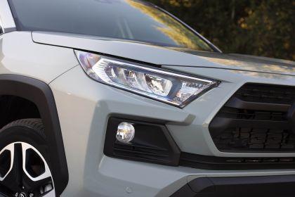 2019 Toyota RAV4 Adventure - Lunar rock 50