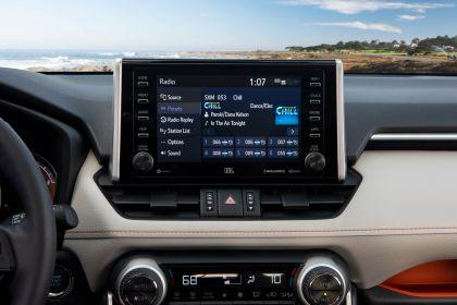 2019 Toyota RAV4 Adventure - Lunar rock 84