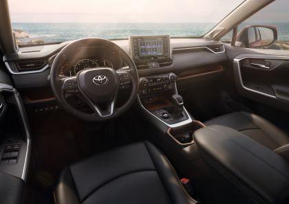 2019 Toyota RAV4 Adventure - Ruby flare pearl 67