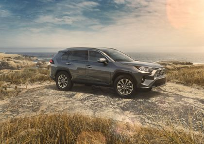 2019 Toyota RAV4 Limited FWD - Magnetic gray 1