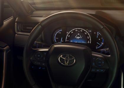2019 Toyota RAV4 Limited HV - Ruby flare pearl 11