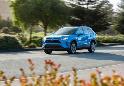 2019 Toyota RAV4 XLE AWD Premium - Blue flame 7