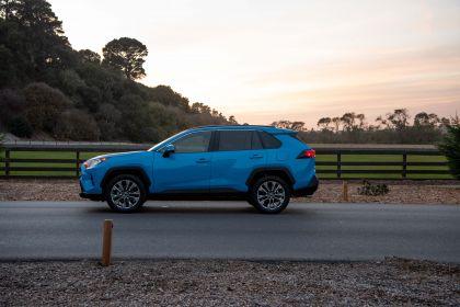 2019 Toyota RAV4 XLE AWD Premium - Blue flame 14