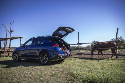 2019 Mercedes-Benz GLE 93