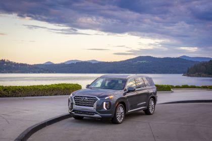 2020 Hyundai Palisade 39