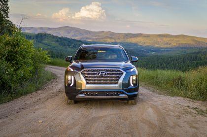 2020 Hyundai Palisade 45
