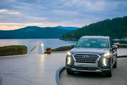 2020 Hyundai Palisade 49