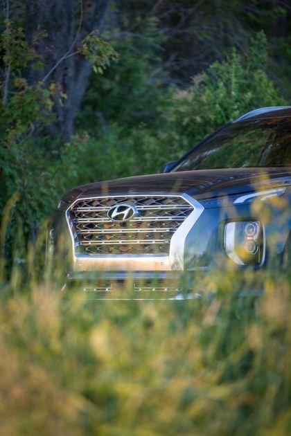 2020 Hyundai Palisade 61