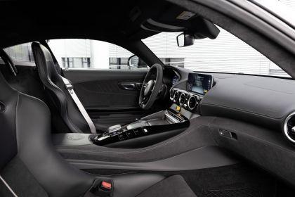 2018 Mercedes-AMG GT R Pro 25