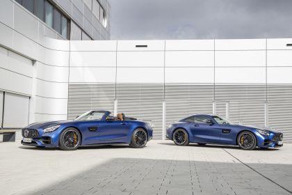 2018 Mercedes-AMG GT C roadster 29