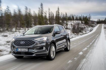 2019 Ford Edge Vignale 3