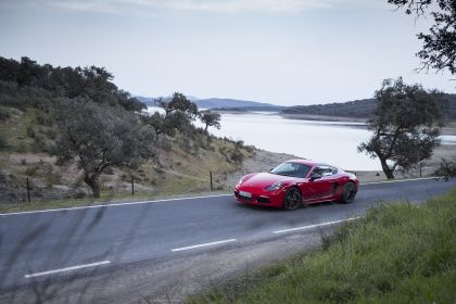2019 Porsche 718 Cayman T 12