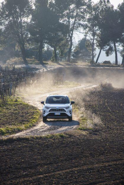 2019 Toyota RAV4 Hybrid - EU version 71