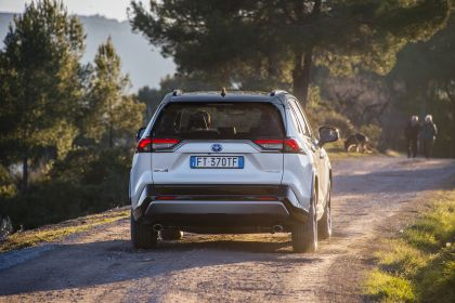 2019 Toyota RAV4 Hybrid - EU version 73