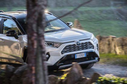 2019 Toyota RAV4 Hybrid - EU version 74
