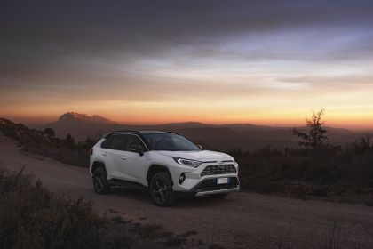 2019 Toyota RAV4 Hybrid - EU version 77