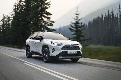 2019 Toyota RAV4 Hybrid - EU version 85
