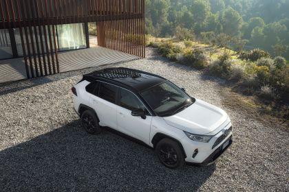 2019 Toyota RAV4 Hybrid - EU version 110