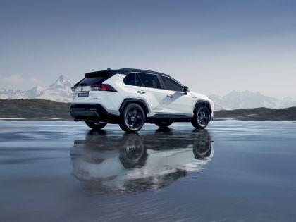 2019 Toyota RAV4 Hybrid - EU version 112
