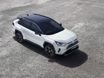 2019 Toyota RAV4 Hybrid - EU version 113