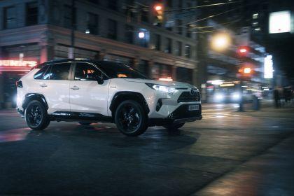 2019 Toyota RAV4 Hybrid - EU version 116