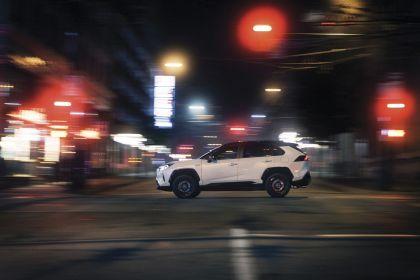 2019 Toyota RAV4 Hybrid - EU version 120