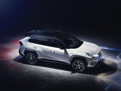 2019 Toyota RAV4 Hybrid - EU version 121