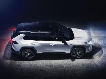 2019 Toyota RAV4 Hybrid - EU version 122