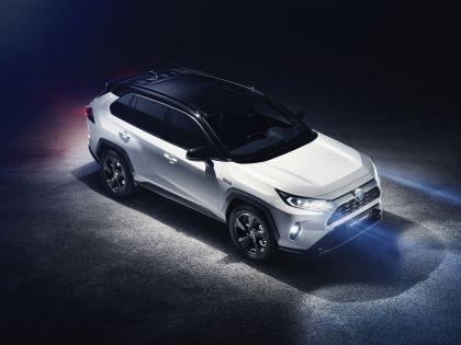 2019 Toyota RAV4 Hybrid - EU version 123