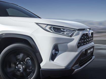2019 Toyota RAV4 Hybrid - EU version 131