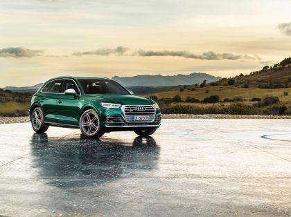 2019 Audi SQ5 TDI 10