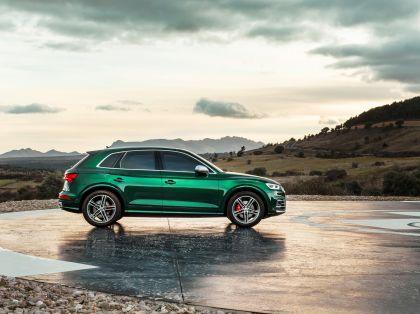 2019 Audi SQ5 TDI 11