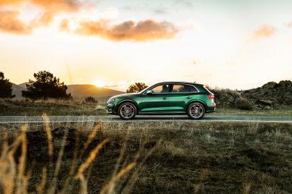 2019 Audi SQ5 TDI 15