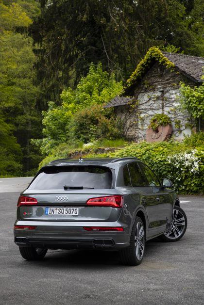 2019 Audi SQ5 TDI 43
