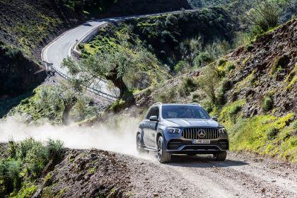 2019 Mercedes-AMG GLE 53 4Matic+ 14