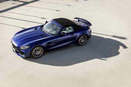 2019 Mercedes-AMG GT R roadster 8