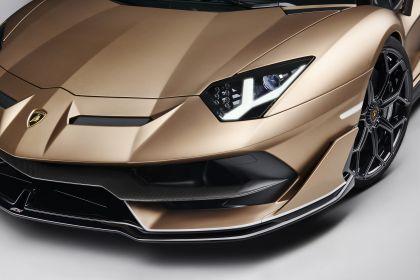 2019 Lamborghini Aventador SVJ roadster 10