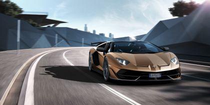 2019 Lamborghini Aventador SVJ roadster 28