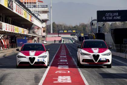 2019 Alfa Romeo Giulia Quadrifoglio Alfa Romeo Racing 17
