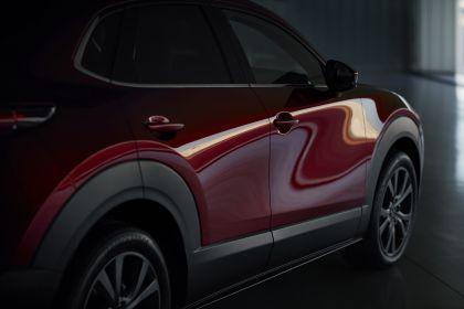 2019 Mazda CX-30 10