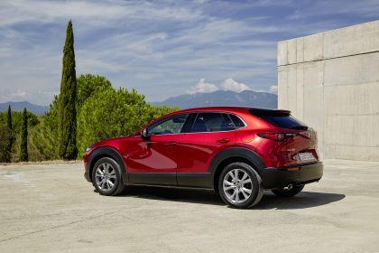 2019 Mazda CX-30 267