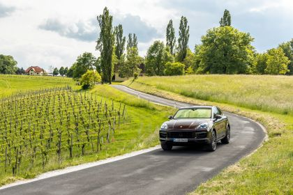2019 Porsche Cayenne Turbo coupé 104