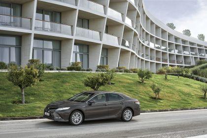 2019 Toyota Camry Hybrid 19