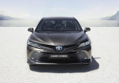2019 Toyota Camry Hybrid 76