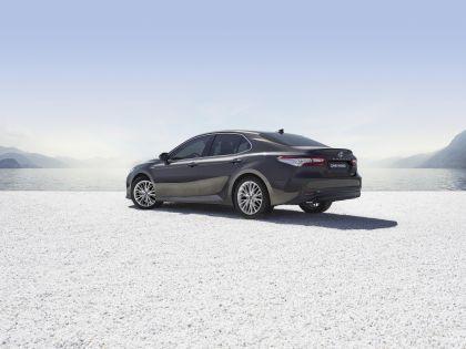 2019 Toyota Camry Hybrid 80