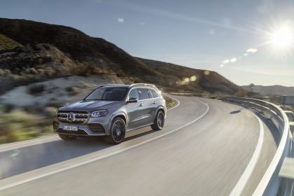 2019 Mercedes-Benz GLS 14