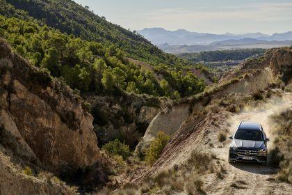 2019 Mercedes-Benz GLS 26